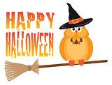 Halloween Owl on Broomstick Illustration