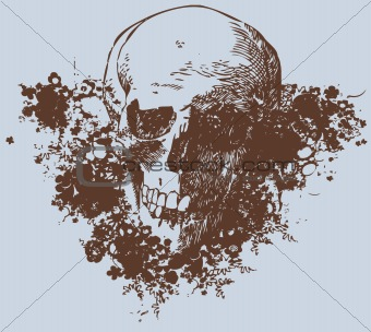 Skull background vector illustration