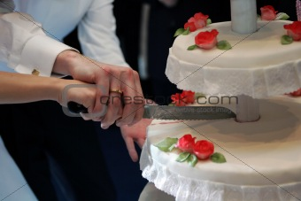 Cutting weddding cake