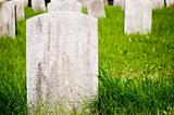 Veteran Stones