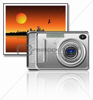 Camera and picture
