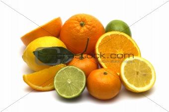 citrus assortment on white background