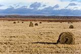 Country with hayricks