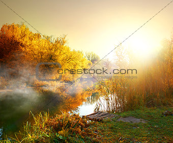 Fog in autumn