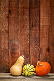 winter squash and barn wood