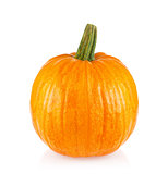 Ripe juicy pumpkin