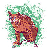 Bobcat on a green background
