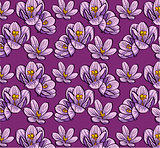 seamless background flowers crocus