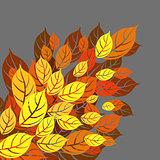Autumn balckground