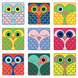 Nine funny owl faces in square shapes