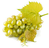 Cluster white grapes with leaf