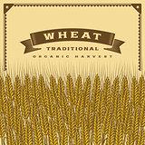 Retro wheat harvest card