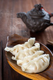 Popular Chinese Gourmet Dumplings