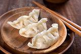 Delicious Chinese Dish Dumplings