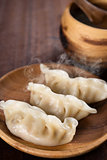 Delicious Chinese Cuisine Dumplings
