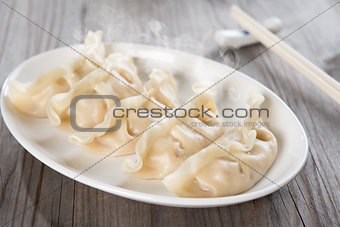 Asian gourmet dumplings