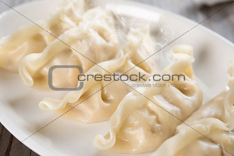 Asian Chinese food dumplings