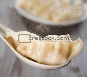 Asian Chinese gourmet dumplings