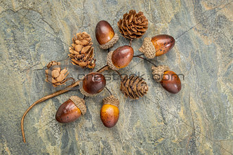acorn and cone fall decoration