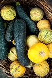 Zucchini in a basket