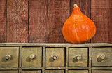 rustic holiday background with squash