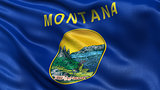 US state flag of Montana