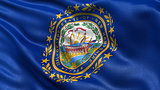 US state flag of New Hampshire