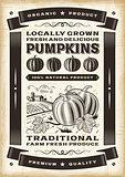 Vintage pumpkin harvest poster