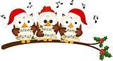 Christmas owls choir singing
