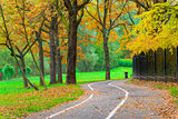 bicycle path in an empty yellow autumn park