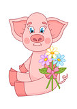 Vector illustration, cute pig giving bouquet of camomiles