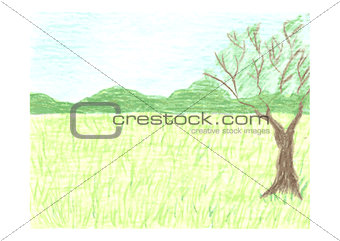 Beautiful landscape with summer forest, sky, green meadow and tree