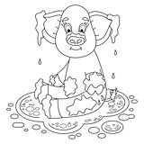 Cute pig in a puddle sits on dirt puddle, coloring book