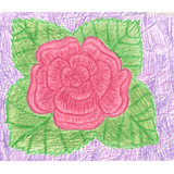 Red rose with green leafs on violet background, blooming flower
