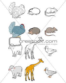 Six animals set
