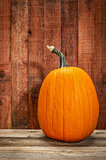pumpkin and  rustic barn wood