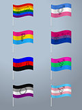 Sexual orientation waving flag set