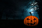 Halloween background with skeletons and pumpkin