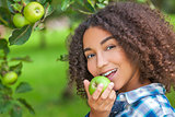 Mixed Race African American Girl Teenager Eating Apple