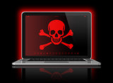 Laptop with a pirate flag on screen. Hacking concept