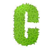 Uppecase letter C consisting of green leaves