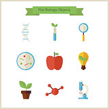 Flat School Biology and Science Objects Set