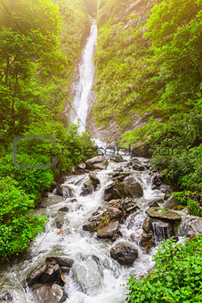 waterfall and green plants in Nepal