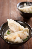 Asian appetizer dumplings soup