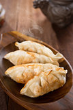 Fresh pan fried dumplings