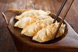 Close up fried dumplings
