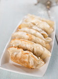 Asian food pan fried dumplings