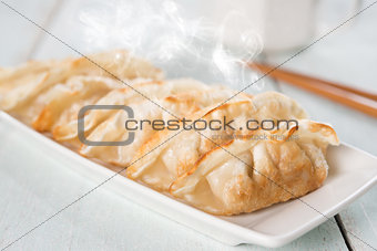 Asian dish pan fried dumplings