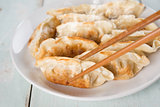 Asian appetizer pan fried dumplings