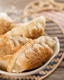 Famous Asian cuisine pan fried dumplings